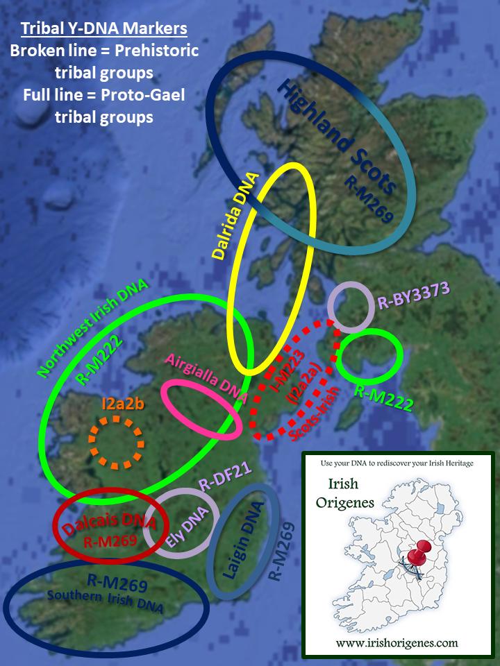 The DNA of the Irish Gael | Irish Origenes: Use Family Tree