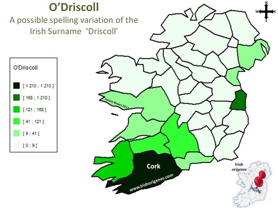 driscoll u0026 39 o
